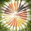 פירות וירקות למניעת סוכרת