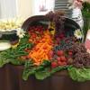 דיאטה ים תיכונית מרזה ובריאה מדיאטה דלת פחמימות או שומן