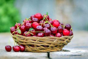 דובדבנים - ערכים תזונתיים ותועלת בריאותית. צילום: Pixabay svklimkin